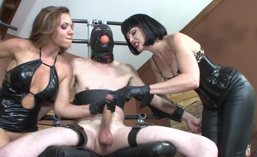 Cleave gag bondage sex